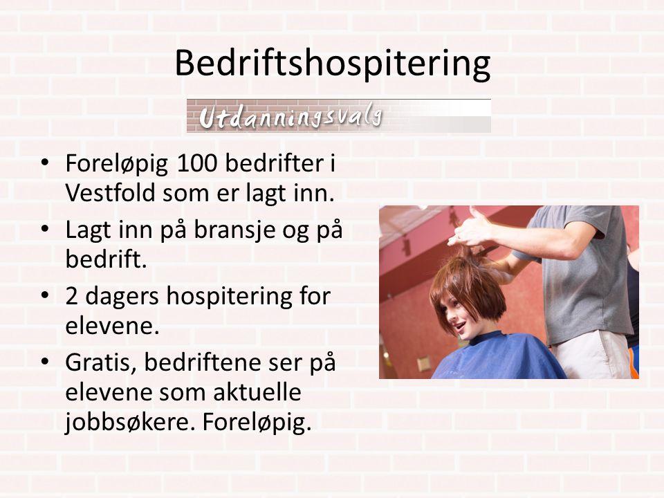 Bedriftshospitering Foreløpig 100 bedrifter i Vestfold som er lagt inn. Lagt inn på bransje og på bedrift. 2 dagers hospitering for elevene. Gratis, b
