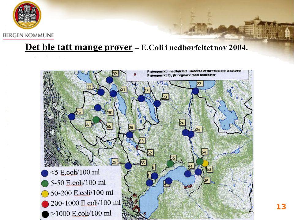 Vannforsyningsdagene 2005 Bergen 7.-9.juni 2005 i d kalland 13 Det ble tatt mange prøver – E.Coli i nedbørfeltet nov 2004.
