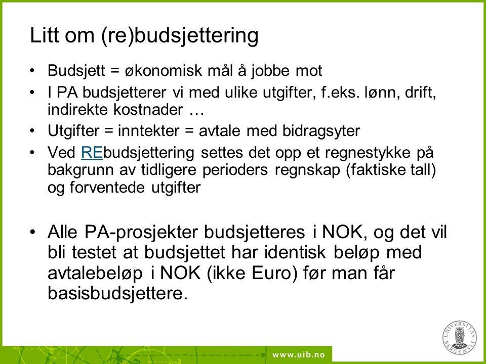 Litt om (re)budsjettering Budsjett = økonomisk mål å jobbe mot I PA budsjetterer vi med ulike utgifter, f.eks.