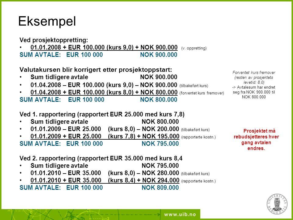Eksempel Ved prosjektoppretting: 01.01.2008 + EUR 100.000 (kurs 9,0) + NOK 900.000 (v.