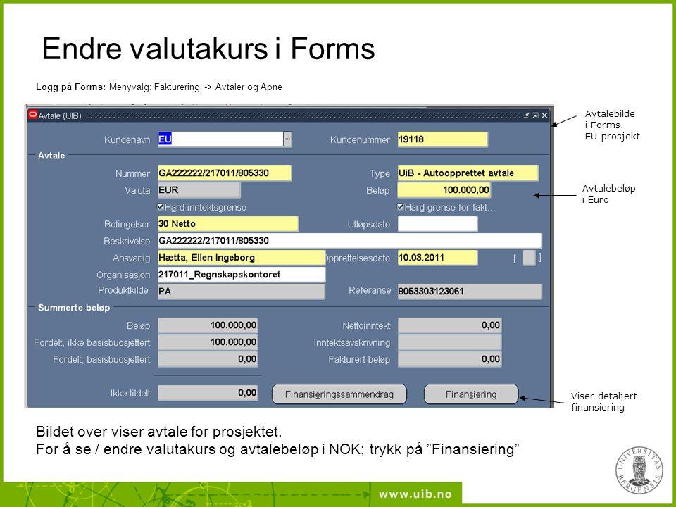 Endre valutakurs i Forms Avtalebeløp i Euro Avtalebilde i Forms.