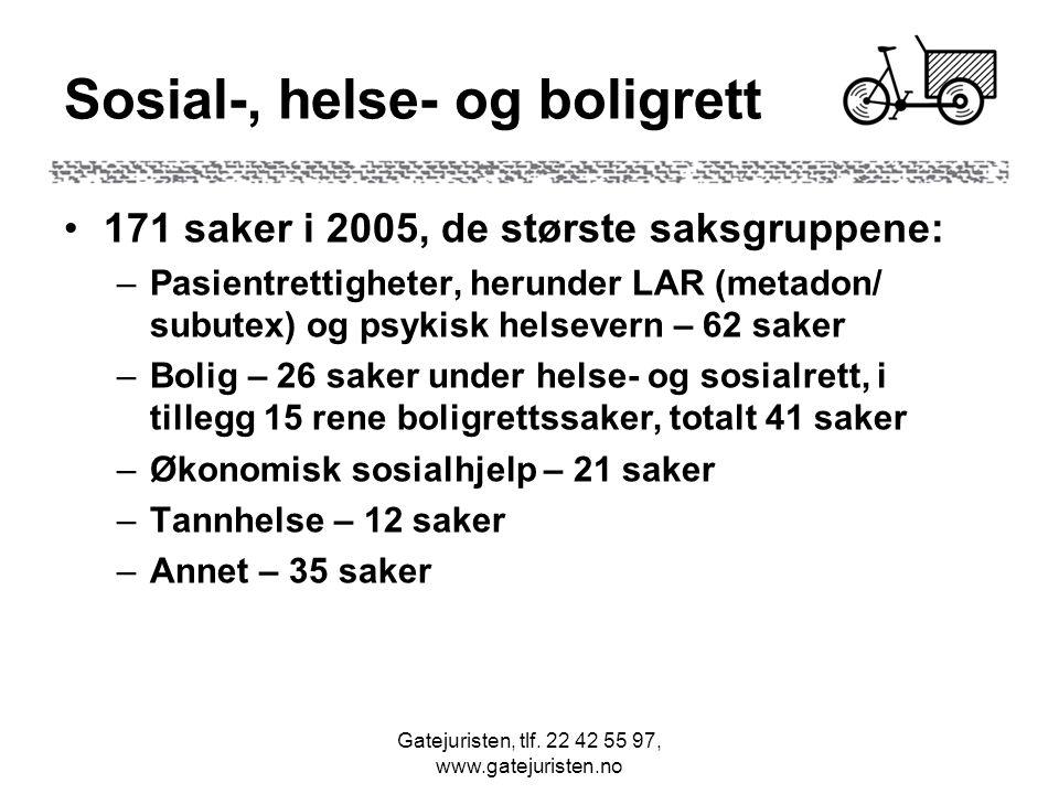 Gatejuristen, tlf. 22 42 55 97, www.gatejuristen.no Sosial-, helse- og boligrett 171 saker i 2005, de største saksgruppene: –Pasientrettigheter, herun