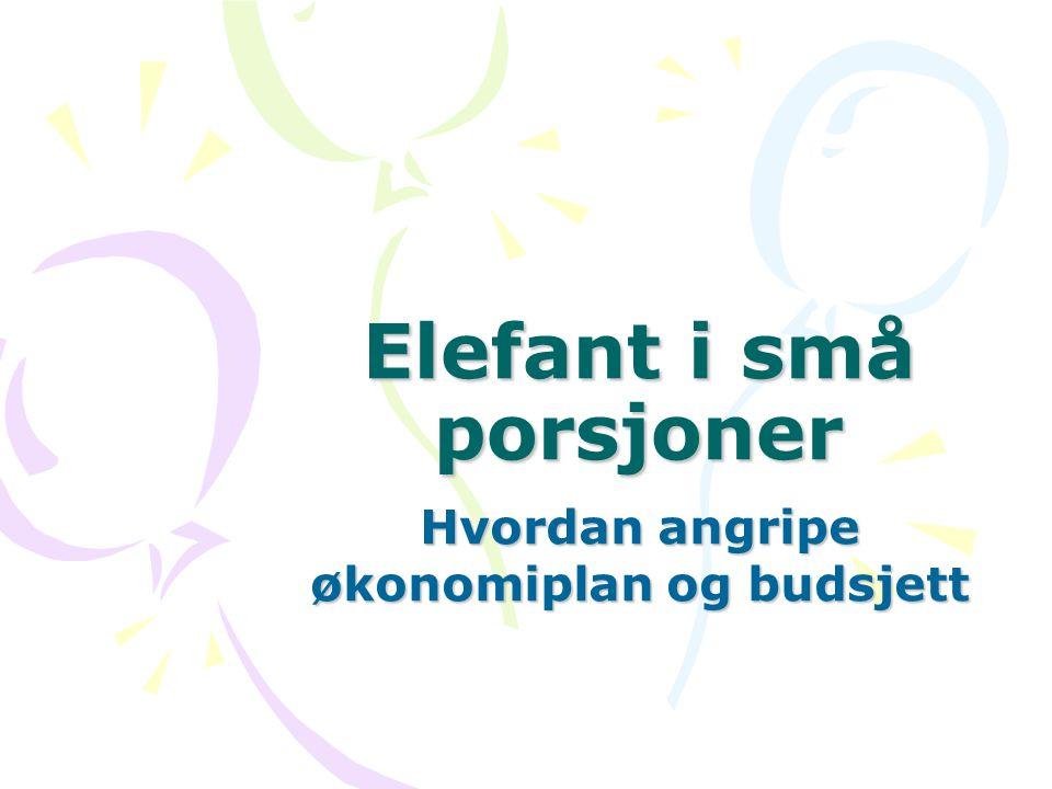 Elefant i små porsjoner Hvordan angripe økonomiplan og budsjett