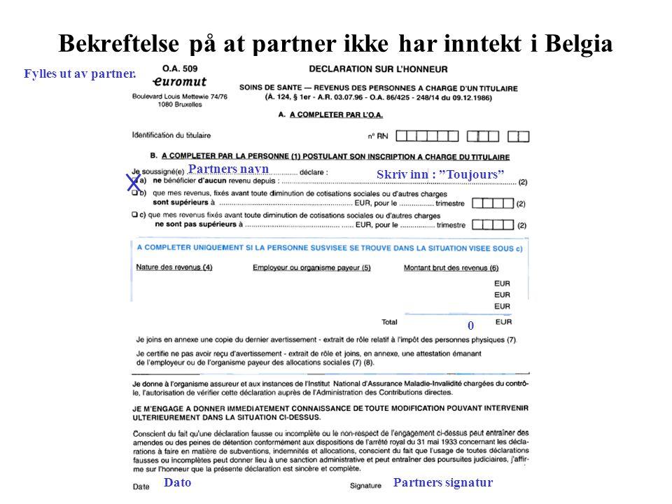 Bekreftelse på at partner ikke har inntekt i Belgia Fylles ut av partner.