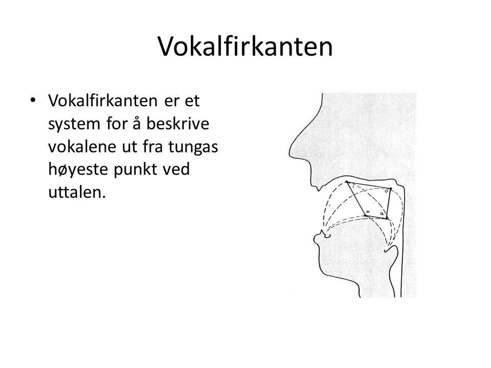 Hvilke trekk ved norsk fonologi kan være vanskelige for personer med et annet morsmål enn norsk.