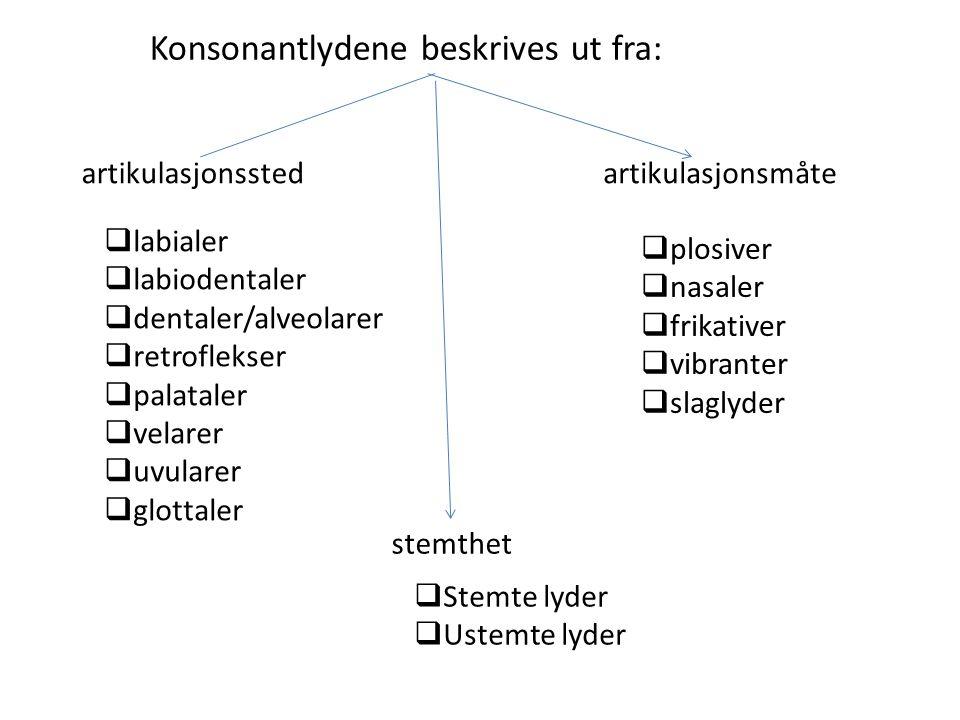 Konsonantene