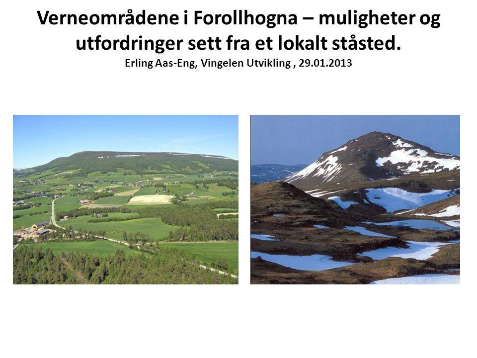 Verneområdene i Forollhogna – muligheter og utfordringer sett fra et lokalt ståsted. Erling Aas-Eng, Vingelen Utvikling, 29.01.2013