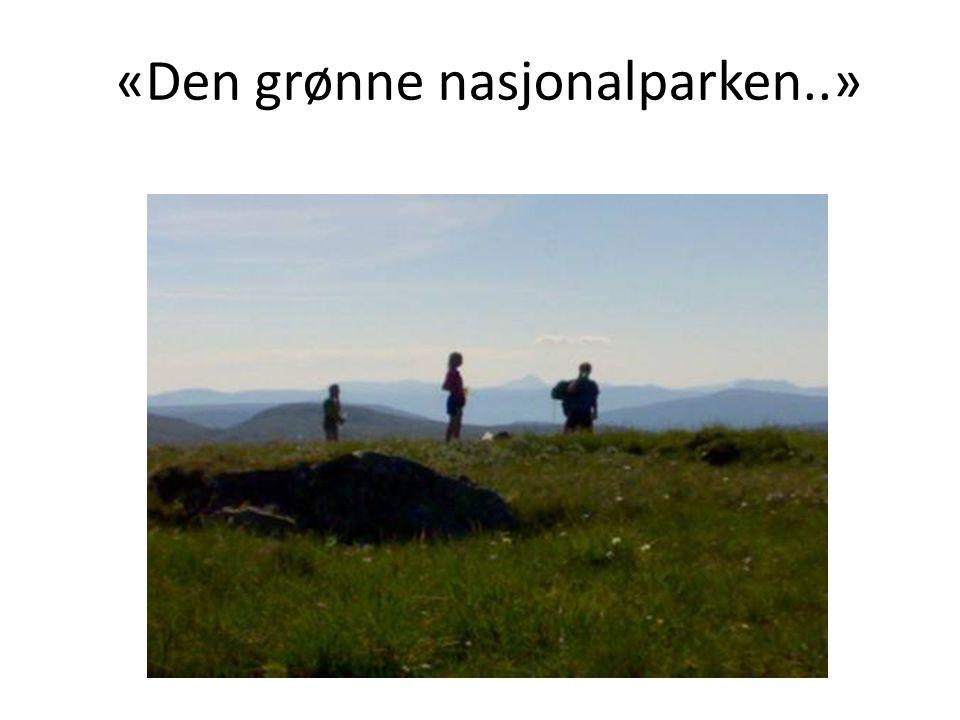 Fjell-Norges rikeste jordsmonn – En svært artsrik flora preget av beitebruken – En unik fauna symbolisert med Hogna- ren' – Et unikt kulturlandskap formet av seterdrift og utmarksbruk Bærekraftig lokal forvaltning gjennom generasjoner