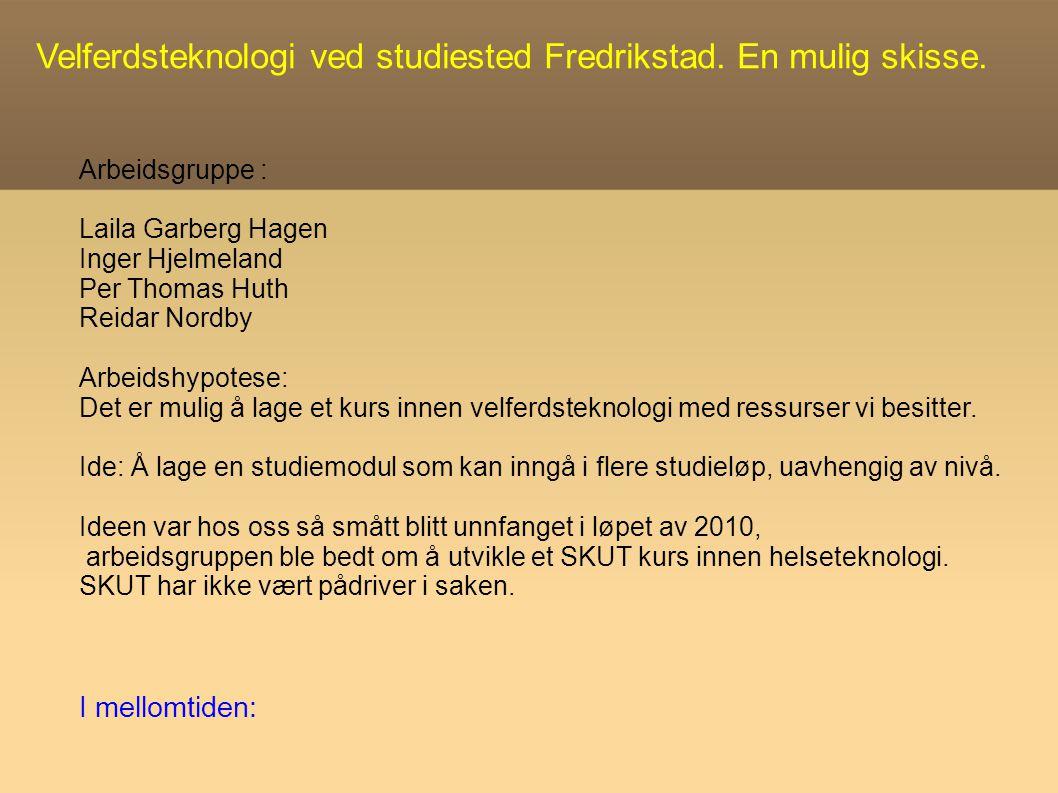 Velferdsteknologi ved studiested Fredrikstad.En mulig skisse.