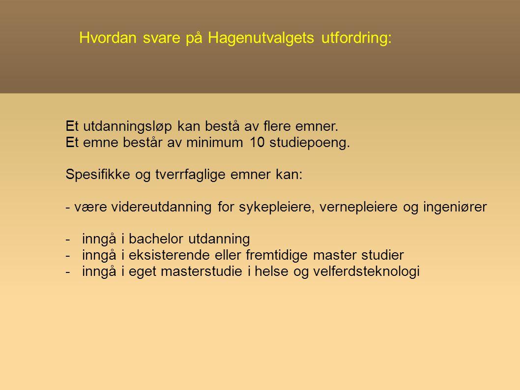 Hvordan svare på Hagenutvalgets utfordring: Et utdanningsløp kan bestå av flere emner.