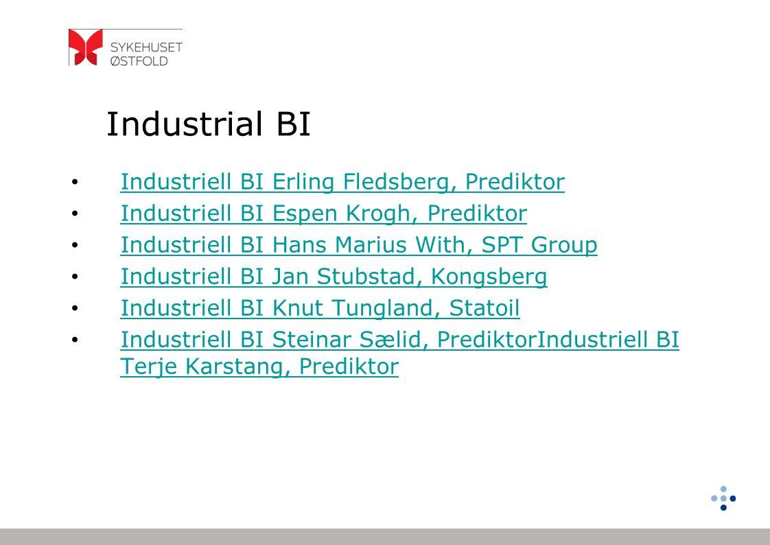 Industrial BI Industriell BI Erling Fledsberg, Prediktor Industriell BI Espen Krogh, Prediktor Industriell BI Hans Marius With, SPT Group Industriell