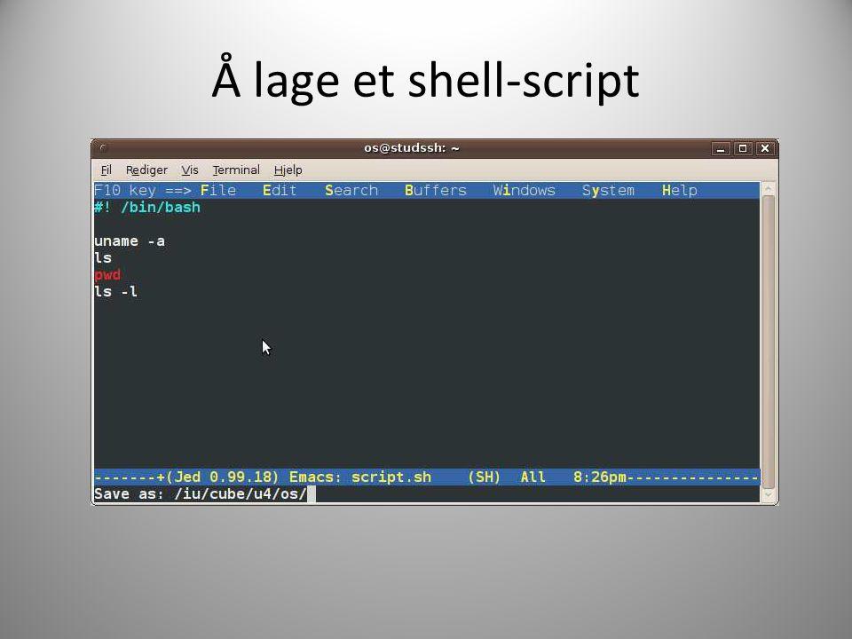 Å lage et shell-script