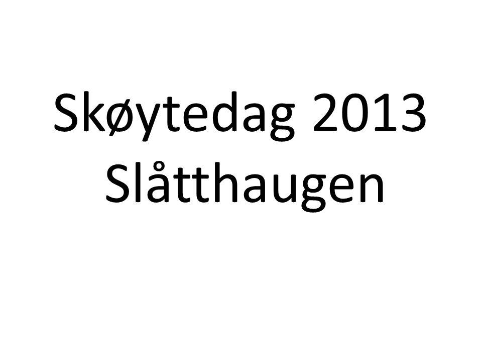 Skøytedag 2013 Slåtthaugen