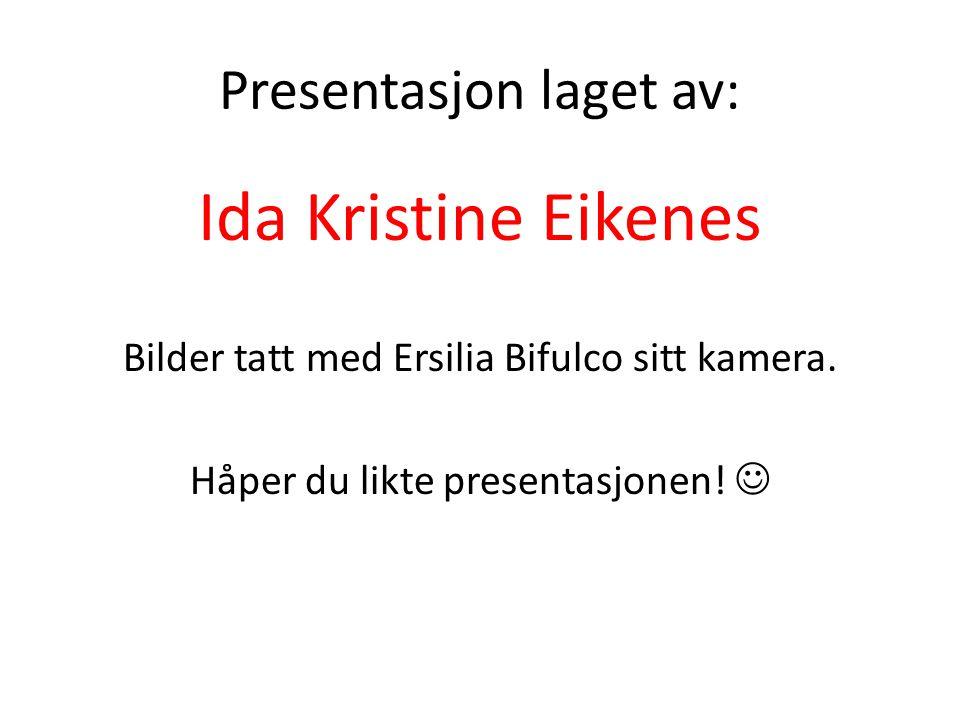 Presentasjon laget av: Ida Kristine Eikenes Bilder tatt med Ersilia Bifulco sitt kamera.