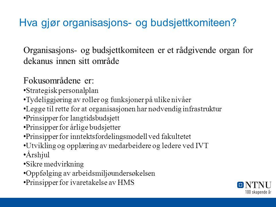 Hva gjør organisasjons- og budsjettkomiteen.
