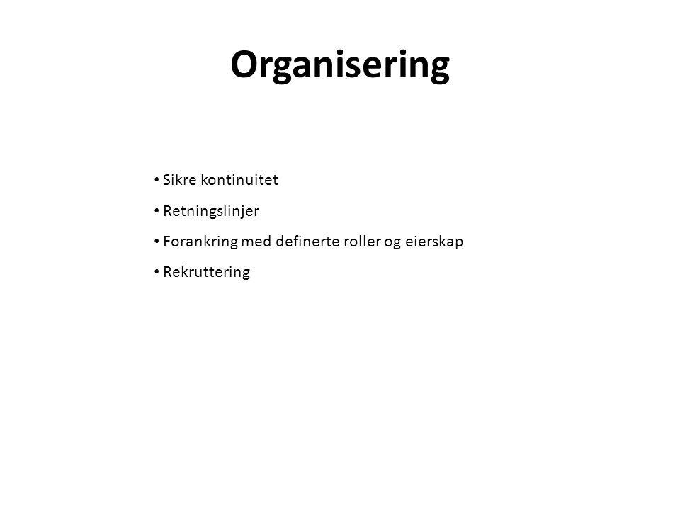Organisering Sikre kontinuitet Retningslinjer Forankring med definerte roller og eierskap Rekruttering