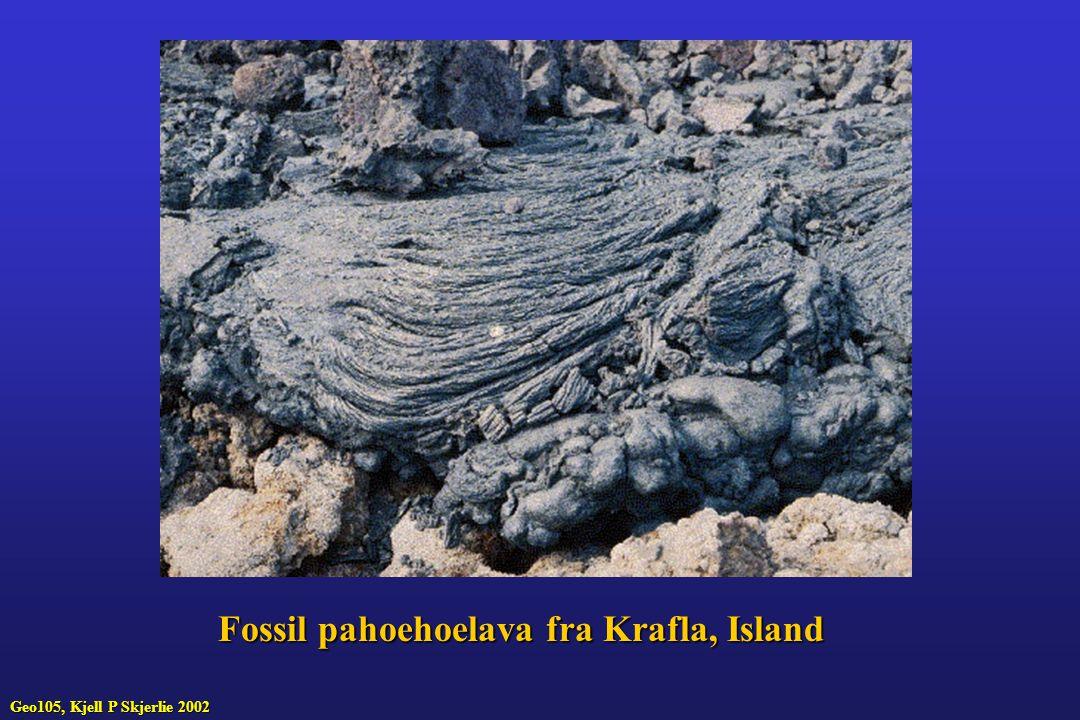 Fossil pahoehoelava fra Krafla, Island Geo105, Kjell P Skjerlie 2002
