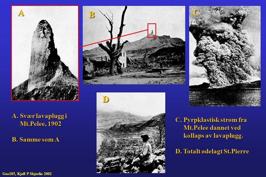 A B C D A. Svær lavaplugg i Mt.Pelee, 1902 Mt.Pelee, 1902 B. Samme som A C. Pyrpklastisk strøm fra Mt.Pelee dannet ved Mt.Pelee dannet ved kollaps av