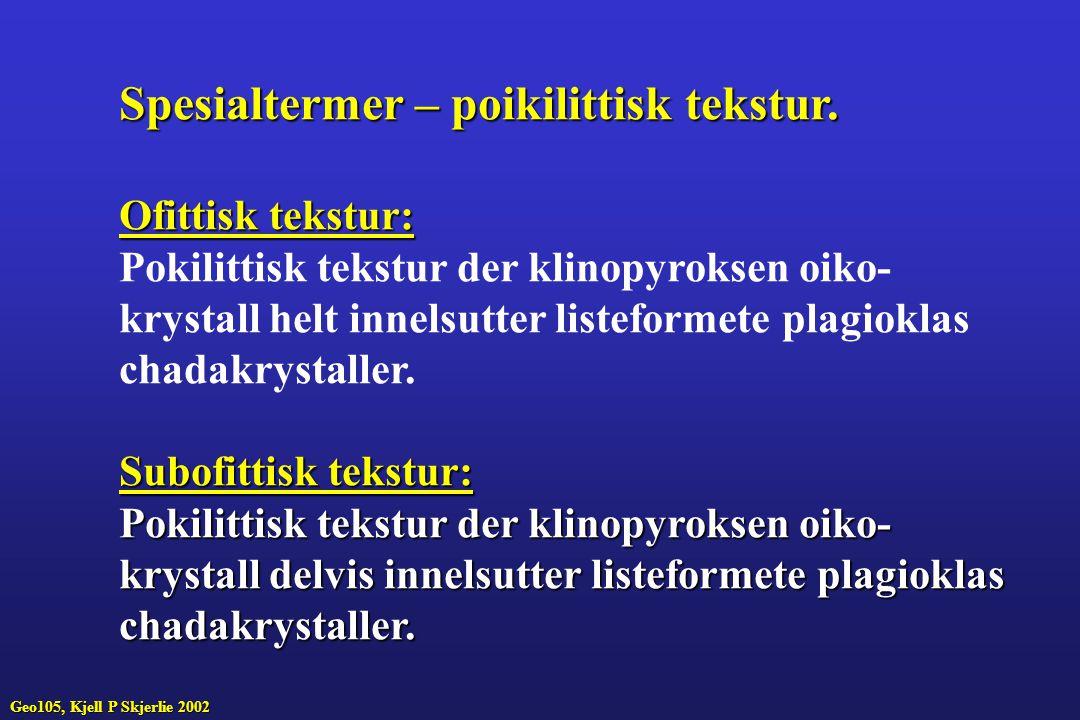 Spesialtermer – poikilittisk tekstur.