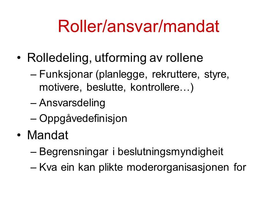 Roller/ansvar/mandat Rolledeling, utforming av rollene –Funksjonar (planlegge, rekruttere, styre, motivere, beslutte, kontrollere…) –Ansvarsdeling –Op