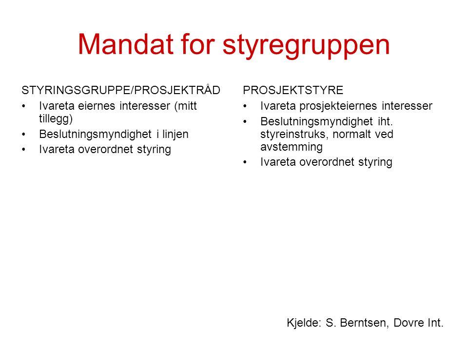 Mandat for styregruppen STYRINGSGRUPPE/PROSJEKTRÅD Ivareta eiernes interesser (mitt tillegg) Beslutningsmyndighet i linjen Ivareta overordnet styring