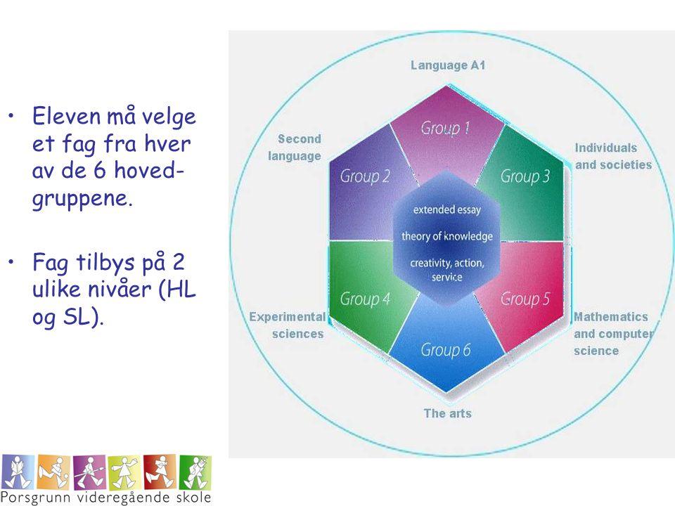 Eleven må velge et fag fra hver av de 6 hoved- gruppene. Fag tilbys på 2 ulike nivåer (HL og SL).