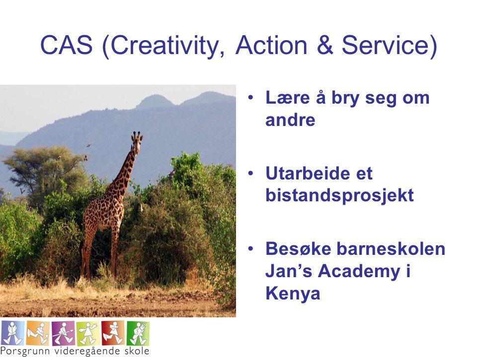CAS (Creativity, Action & Service) Lære å bry seg om andre Utarbeide et bistandsprosjekt Besøke barneskolen Jan's Academy i Kenya