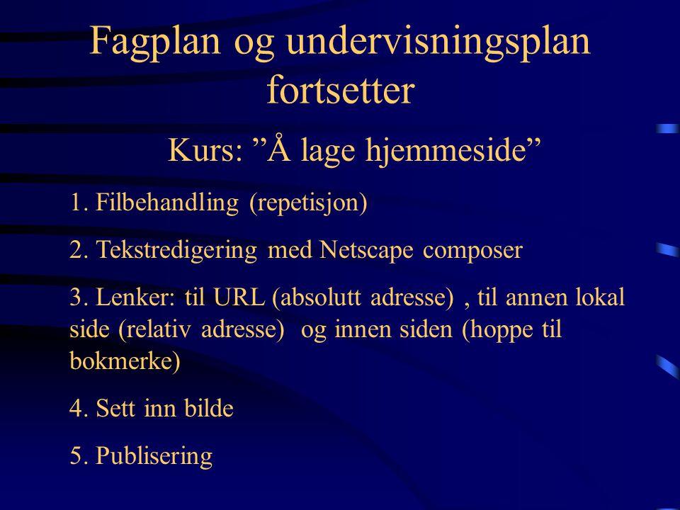 Fagplan og undervisningsplan 1.