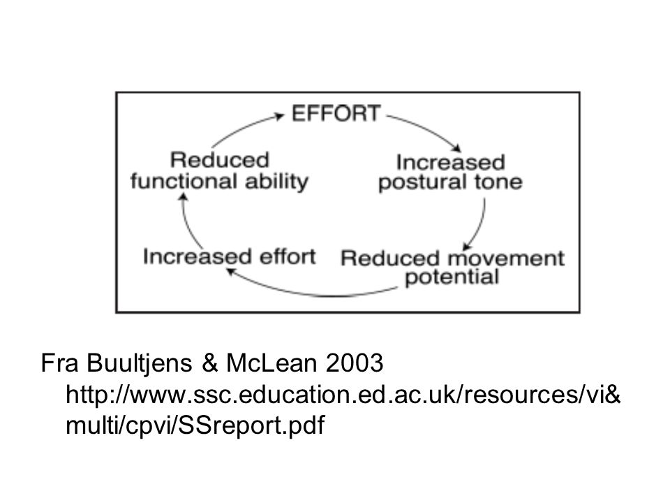 Fra Buultjens & McLean 2003 http://www.ssc.education.ed.ac.uk/resources/vi& multi/cpvi/SSreport.pdf