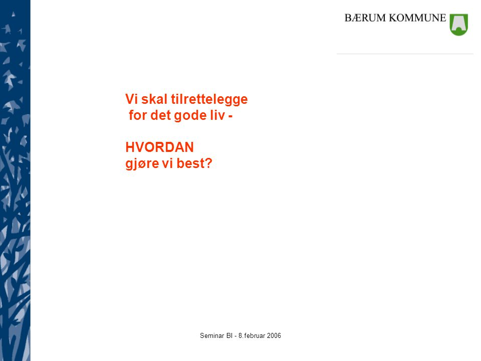 Seminar BI - 8.februar 2006 Vi skal tilrettelegge for det gode liv - HVORDAN gjøre vi best