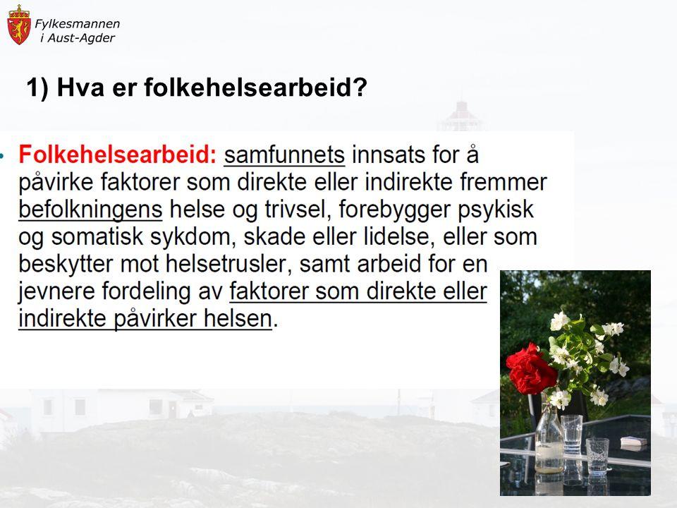 Noen hovedpunkter fra status Vågå (ca.