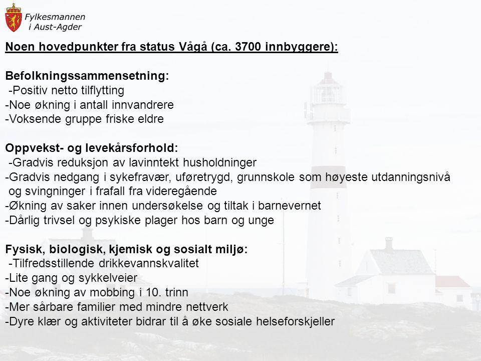 Noen hovedpunkter fra status Vågå (ca. 3700 innbyggere): Befolkningssammensetning: -Positiv netto tilflytting -Noe økning i antall innvandrere -Voksen