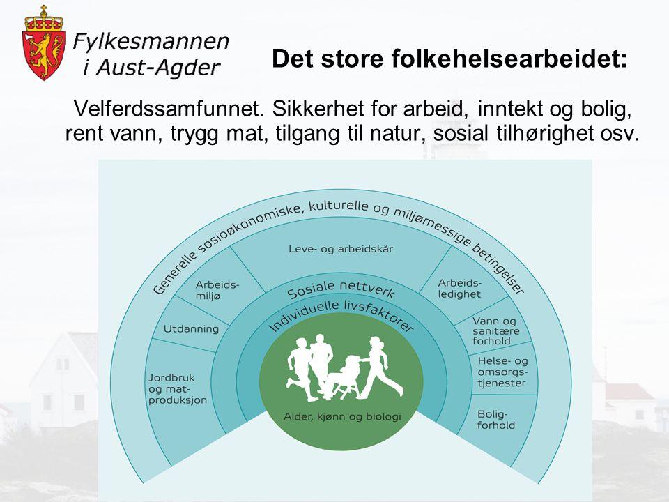 Skader og ulykker: -49 innlagt årlig på sykehus etter ulykker, få hoftebrudd i denne kommunen Helserelatert atferd: -40 % av 4.