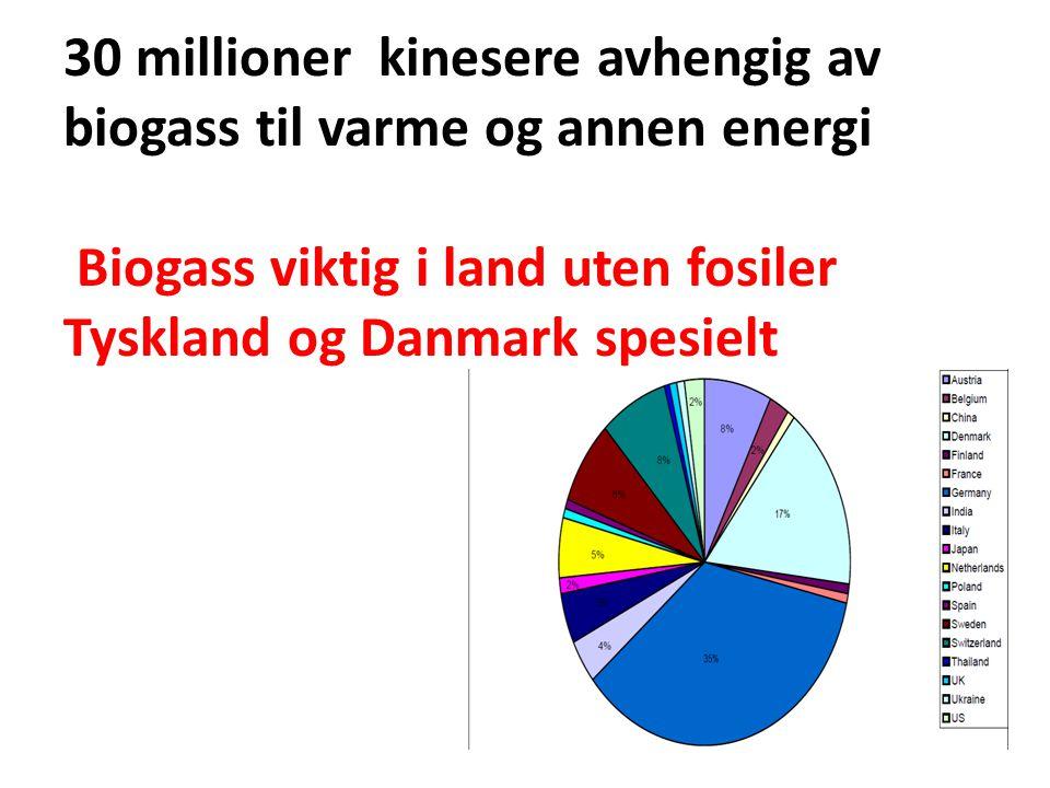 30 millioner kinesere avhengig av biogass til varme og annen energi Biogass viktig i land uten fosiler Tyskland og Danmark spesielt