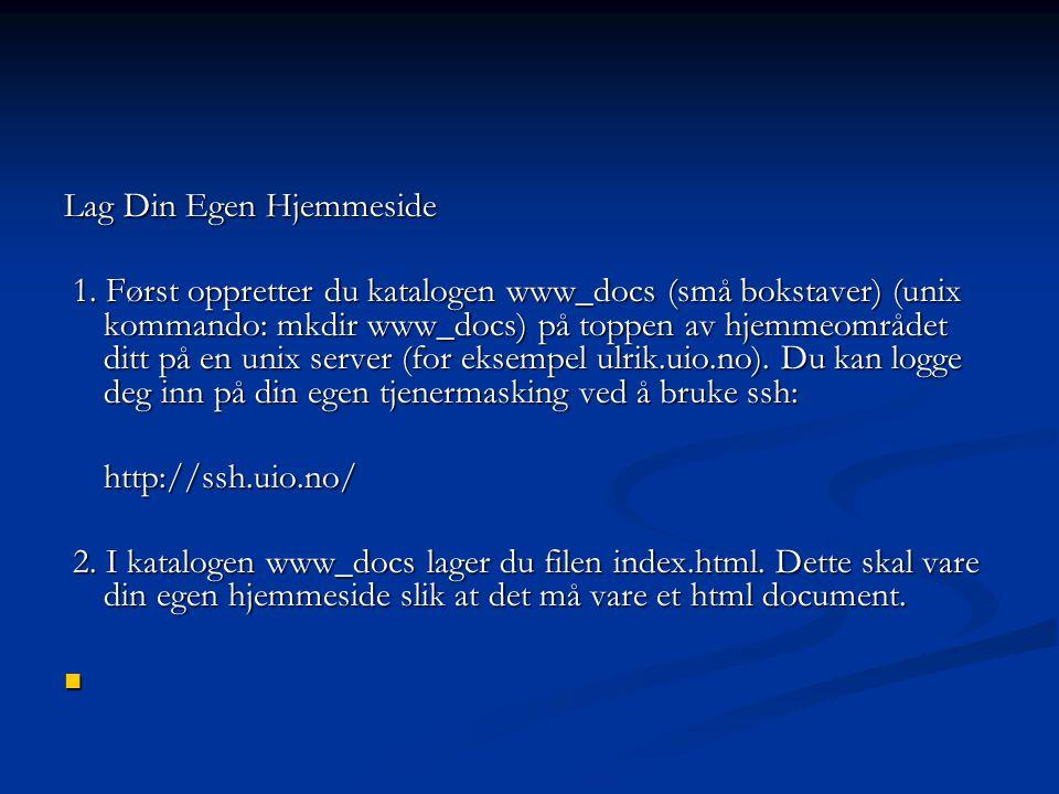 Lag Din Egen Hjemmeside 1.