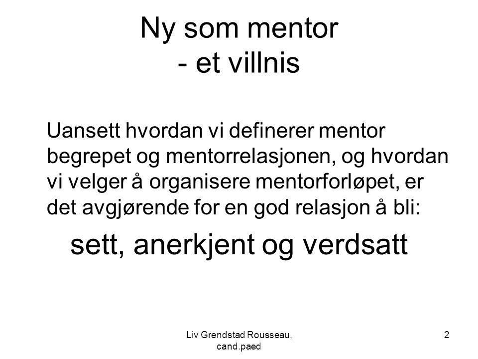 Ny som mentor - et villnis Uansett hvordan vi definerer mentor begrepet og mentorrelasjonen, og hvordan vi velger å organisere mentorforløpet, er det