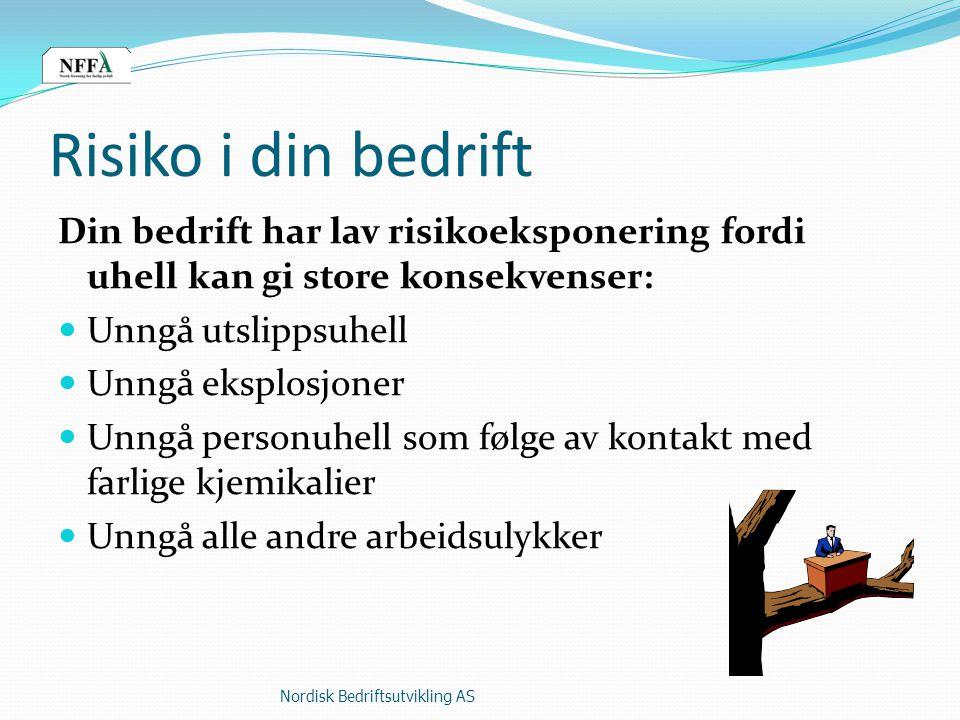 Hvorfor skjer ulykker.Nordisk Bedriftsutvikling AS3 1.