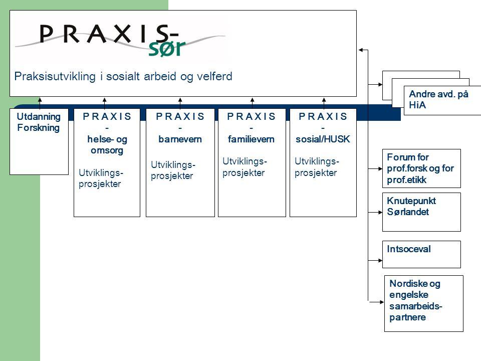 P R A X I S - helse- og omsorg Utviklings- prosjekter P R A X I S - barnevern Utviklings- prosjekter P R A X I S - sosial/HUSK Utviklings- prosjekter