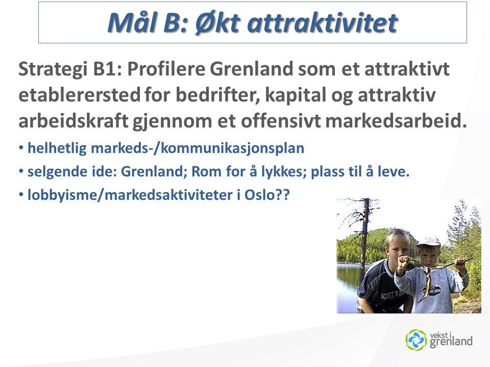 Strategi B1: Profilere Grenland som et attraktivt etablerersted for bedrifter, kapital og attraktiv arbeidskraft gjennom et offensivt markedsarbeid.