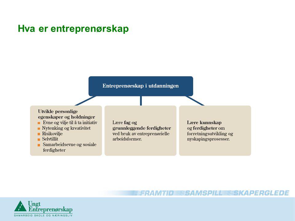 Hva er entreprenørskap