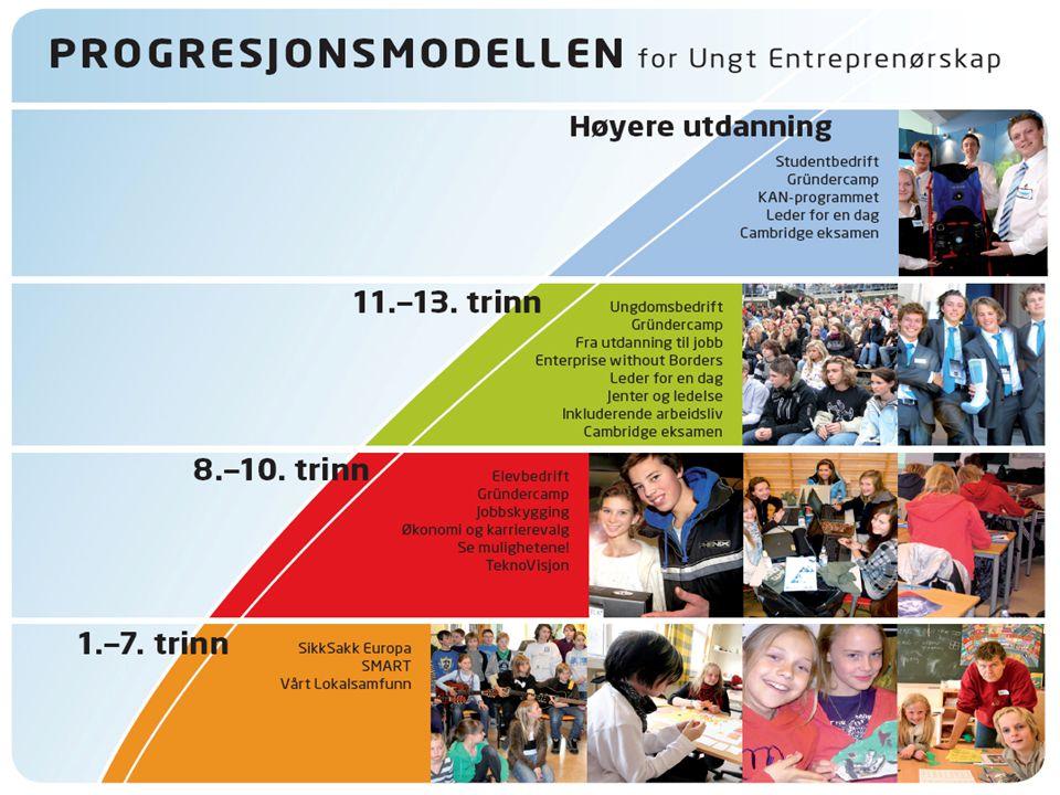 UEs programmer kan deles inn i 3 kategorier 1.