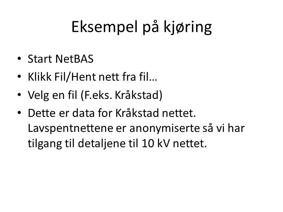 Eksempel på kjøring Start NetBAS Klikk Fil/Hent nett fra fil… Velg en fil (F.eks. Kråkstad) Dette er data for Kråkstad nettet. Lavspentnettene er anon