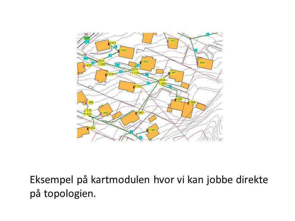 Eksempel på kartmodulen hvor vi kan jobbe direkte på topologien.