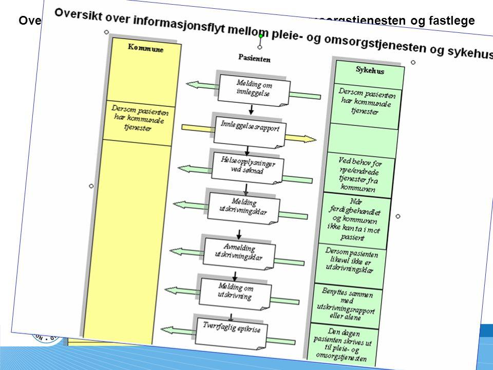 Oversikt over informasjonsflyt mellom pleie- og omsorgstjenesten og fastlege