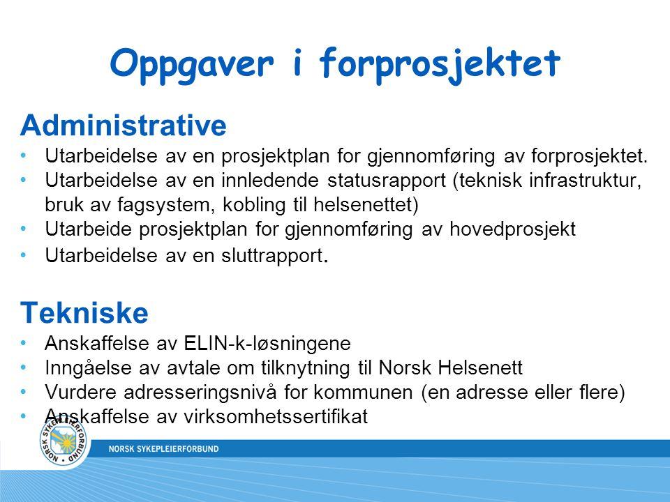 Oppgaver i forprosjektet Administrative Utarbeidelse av en prosjektplan for gjennomføring av forprosjektet. Utarbeidelse av en innledende statusrappor