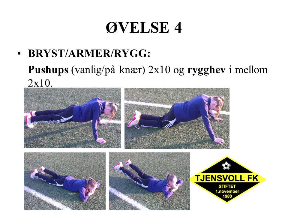 ØVELSE 4 BRYST/ARMER/RYGG: Pushups (vanlig/på knær) 2x10 og rygghev i mellom 2x10.