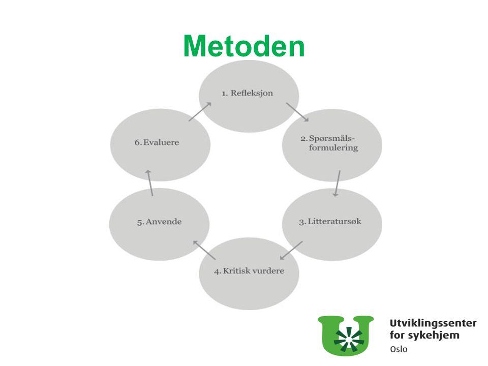 KBP – metode for systematisk kvalitetsarbeid Programmet på turen og KBP Erfaringsbasertkunnskap Forskningsbasertkunnskap Brukermedvirkning el.