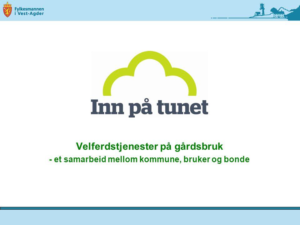 Velferdstjenester på gårdsbruk - et samarbeid mellom kommune, bruker og bonde