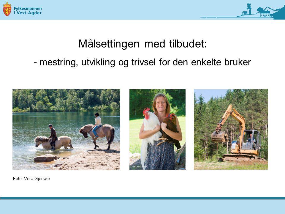 NRK- nett:  Inn på tunet – psykisk helse:  http://www.nrk.no/nett-tv/arkivert/97432/ http://www.nrk.no/nett-tv/arkivert/97432/ INN PÅ TUNET – Vest-Agder