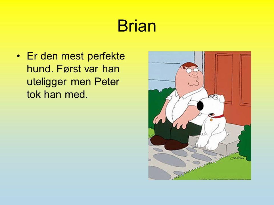 Brian Er den mest perfekte hund. Først var han uteligger men Peter tok han med.
